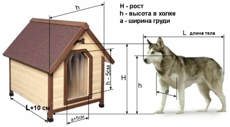 Конура для собаки своими руками видео фото 281