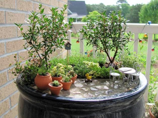 Миниатюрный сад в цветочном горшке