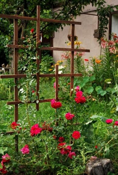 вариант простой опоры для плетистой розы