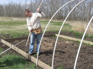 Как построить теплицу на дачном участке