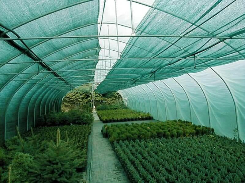 Что нужно знать при выборе затеняющей и солнцезащитной сетки